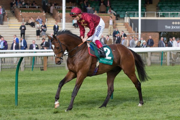 Friday's racing with a special day to look forward to at Epsom