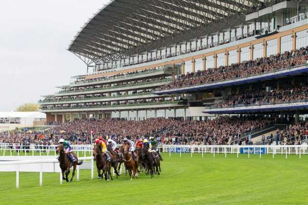 The best tips for Tuesday at Royal Ascot