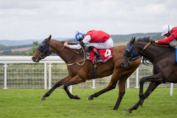 Tuesday's tips for racing at Lingfield and Southwell