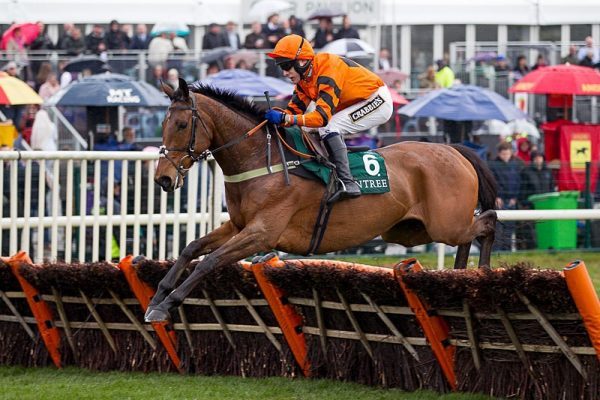 Thistlecrack to stay with novices