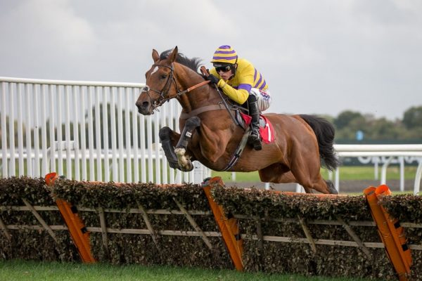 Thursday's tips for racing at Ludlow and Cork