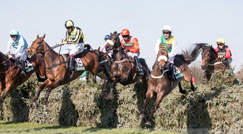 Grand national guide to betting on sports donk betting online