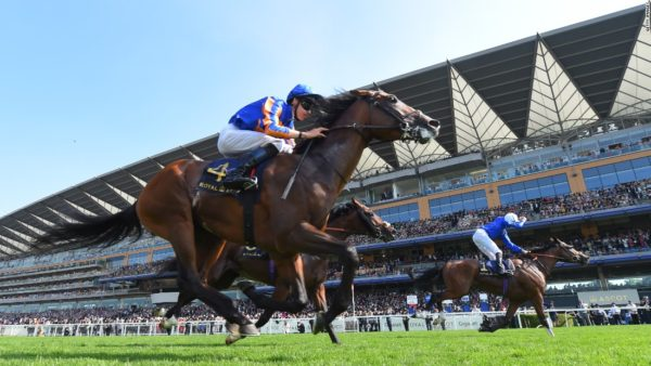 Andy Newton's Free Tips and Trends: Saturday 27th July 2019
