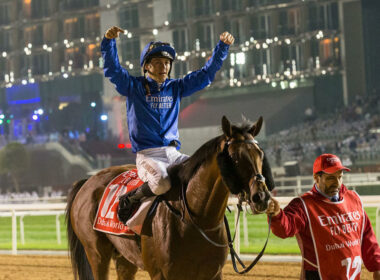 2020 Dubai World Cup Free Tips & Trends